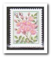 Maldiven 2001, Postfris MNH, Flowers - Maldiven (1965-...)
