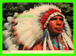 INDIENS - CHEF INDIAN AMÉRICCAIN - - Indiens De L'Amerique Du Nord