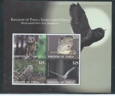 Tonga 2012 $25 Owls Airmail Express Sheet Of 4 MNH - Tonga (1970-...)
