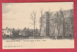 Ham-sur-Heure - Le Château ... Le Vieux Donjon  ( Voir Verso ) - Ham-sur-Heure-Nalinnes