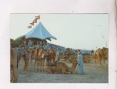 CPM UNITED ARAB EMIRATES, CAMEL RACE - Emirats Arabes Unis