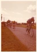 Tour De France 1972...en Hte Garonne...EDDY MERKX...photo Format.9/12.5 - Radsport