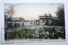 Early 20th Century Japan Postcard - Iris Garden At Kamata, Yokohama 1911 - Posted - Yokohama