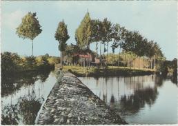 87 - FOLLES - LE MOULIN DE BOIROT - France