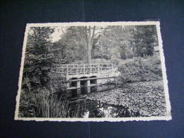 Pstk2739 : Lovenjoel - Salve Mater - In Het Park - Bierbeek