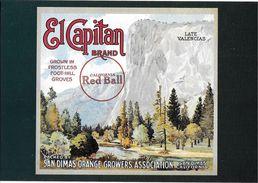 ADVERTISING BRAND ORANGE FRUITS PUBLICITE MARQUE ORANGE EL CAPITAN  RED BALL CALIFORNIE  FORET LATE VALENCIAS - Publicité