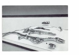 Cpm - Bruxelles Institut Sciences - VERTEBRES FOSSILES - MOSASAURE  - Squelette Fossile Reptile Marin Crétacé Hainaut - Autres