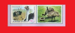 North Korea 2016 Poultry Volailles Ostrich Autruche Strauß MNH ** - With Label