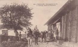 ANGOULINS DECHARGEMENT DU SEL A LA SALORGE DEVANT LES DOUANIERS ANIMATION ATTELAGES - Angoulins