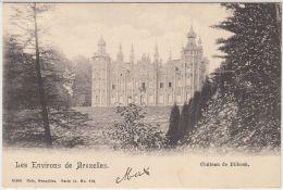 28132g  CHATEAU DE DILBEEK - KASTEEL - 1904 - Dilbeek