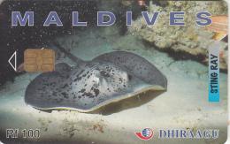 MALDIVES ISL. - Sting Ray, CN : 256MLDGIC, Used - Maldives