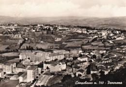 CAMPOBASSO - F/G B/N LUCIDA (210816) - Campobasso
