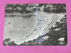 SAINT PALAIS SUR MER   1950  PLAGE / FRONT DE MER   10X15 CM - France