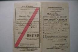 Austria, Wien, Viena, Schülermonatskarten Zum Schulbesuch, 1928-1929, Ausweis - Wochen- U. Monatsausweise