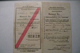 Austria, Wien, Viena, Schülermonatskarten Zum Schulbesuch, 1928-1929, Ausweis - Week-en Maandabonnementen