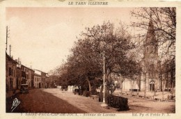 81 SAINT-PAUL CAP De JOUX Avenue De Lavaur , - Saint Paul Cap De Joux