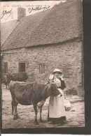 Jersey. Coiffe De Jersey-Costume-Cow-Vache-Kuh 1905 - Jersey