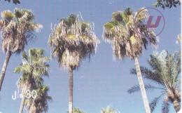 TARJETA DE LIBIA DE 30 UNITS DE UNAS PALMERAS (LIBYANA)