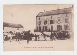 77 - TRILBARDOU / FERME DES OLIVETTES - Autres Communes