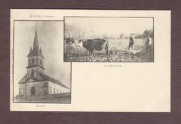 ANOULD Boeufs Labourant Labour Travaux Agricole église VOSGES 88650  éditeur : Weick  N° 125