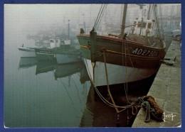 29 AUDIERNE Port Breton Au Petit Matin ; Chalutiers - Audierne
