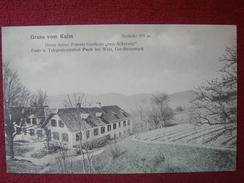"""AUSTRIA / KULM - HERRN ANTON ZÖHRERES GASTHAUS """"ZUM ACKERWIRT"""" - PUCH BEI WEIZ / 1910 - Other"""