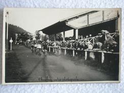 CARTE POSTALE / PHOTO COURSE CYCLISME DE 1928 A SAINT DIE VOSGES / PELOTON DE CYCLISTES - Saint Die