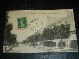 AIN TEMOUCHENT - BOULEVARD NATIONAL - AFRIQUE ALGERIE (T) - Autres Villes