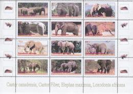 ELEPHANTS 12 Stamps Full Set  LIMITED EDITION!!!  Mint CINDERELLA - Olifanten