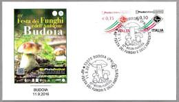 49 FESTA DEI FUNGHI - SETAS - MUSHROOMS. Budoia, Pordenone, 2016 - Champignons