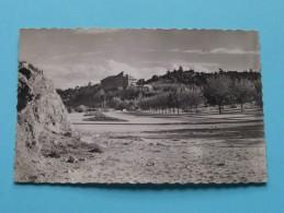 IFRANE La Grande Avenue ( 0.236 ) Anno 1950 ( Zie Foto Details ) !! - Maroc