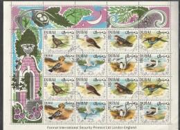 DUBAI - Animals - Birds - Nature - CTO - Otros