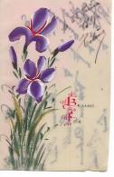 """Carte  Celluloid  -   """"  Bonne  Fete  """"    -  Les  Iris - Holidays & Celebrations"""