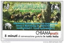 CHIAMAGRATIS NUOVA DT 1177 AGRIBREAD - Private-Omaggi
