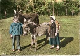 58. CPM. Nièvre. Scènes Et Costumes Morvandeaux (folklore, Enfants, Anes, Animée - Nevers