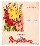 Nov16    78044     Buvard   Biscottes Magdeleine   N°7   Les Fleurs  Glaieuls - Biscottes