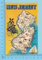 Maps, Cartes Géographiques - New Jersey Map USA  , State Flower Used In 1974 USA Stamp - 2 Scans - Cartes Géographiques