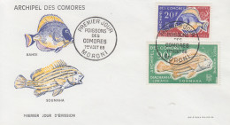 Enveloppe  FDC  1er  Jour   ARCHIPEL  Des  COMORES   Poissons   1968