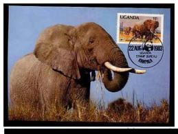 Maxi Maximum Card Of WWF W.W.F. Uganda Elephant Stamp 1988 RARE - W.W.F.