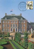 D27318 CARTE MAXIMUM CARD FD 2011 NETHERLANDS - PALACE 't LOO APELDOORN - BEAUTIFUL HOLLAND - CP ORIGINAL - Architecture
