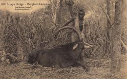 Chasse Antilope Cheval Entier 30ct De Kaballa à Stambruges - Congo Belga - Altri