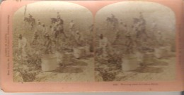 6946. Morning Start In Cotton Field. - Stereoscope Cards