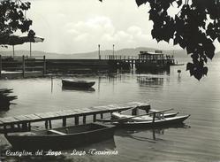 Lago Trasimeno Castiglione Del Lago VG 1964 - Italia