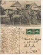 LAOS - ELèPHANTS ROYAUX DE LUANG-PRABANG Cartolina/postcard #112 - Laos