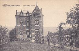 Profondeville - Villa Des Roses (animée, Chèvre, Edition Félix Férard) - Profondeville