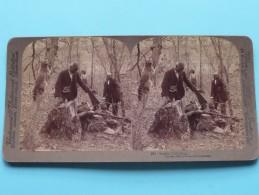 SUMFIN' DID DRAP ( Underwood & Underwood N° 2 ) Zie Foto´s Voor Details ) ! - Stereoscopic