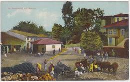 Albania - Shkodra, Shkodër, Skutari, Skadar - Feldpost 1915 - Albanien
