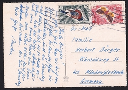 Lebanon: PPC Picture Postcard To Germany, 1955, 2 Stamps, Butterfly, Insect, Bird (traces Of Use) - Libanon