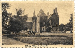 Rebecq NA1: Château De La Grand'Haie 1941 - Rebecq