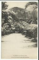 Cpa SEYCHELLES, Cote D'Or Estate Praslin - Seychellen